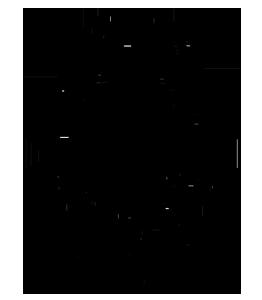 logo_fond_v2